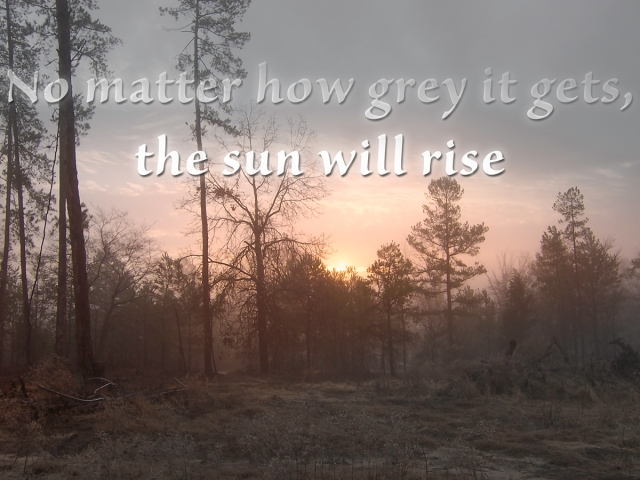 TheSunWillRise